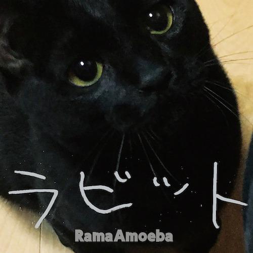 ラビット / Rama Amoeba